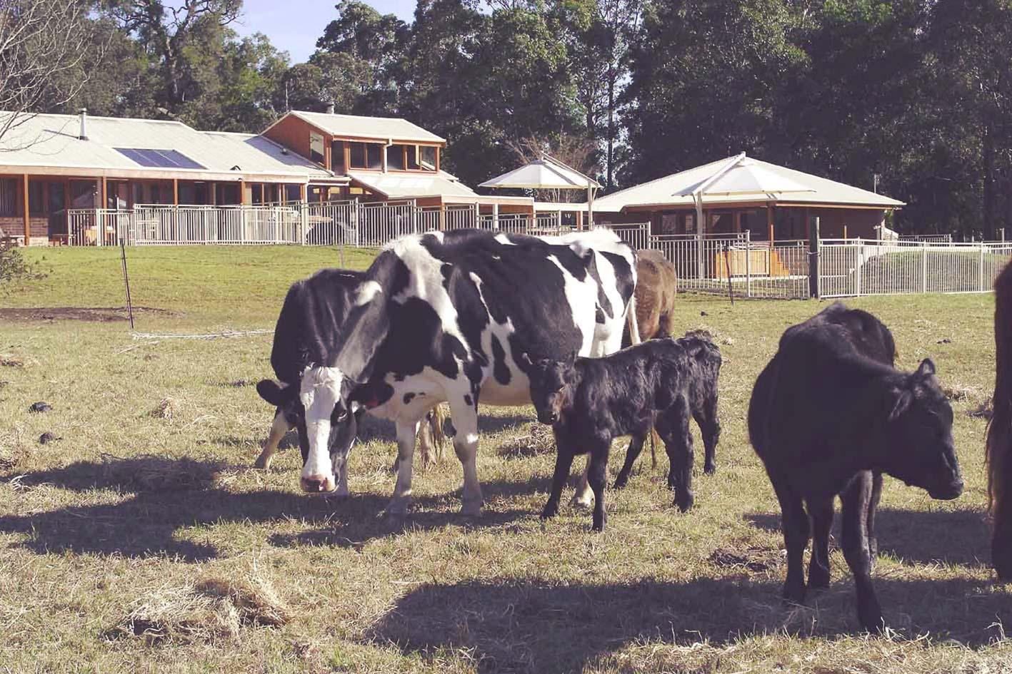 waymount-farm-grounds-01